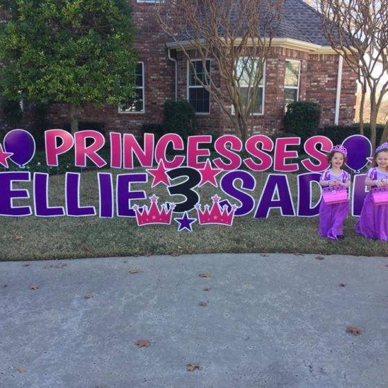 Princess Birthday Yard Greeting for Sadie and Ellie