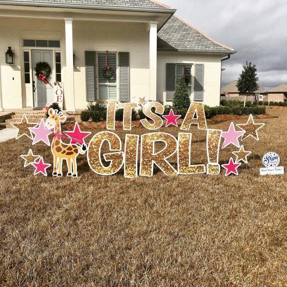 It's A Girl! Congratulations Yard Greeting Rental